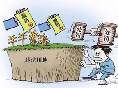 自然资源部:持续打击违法占用耕地、永久基本农田行为